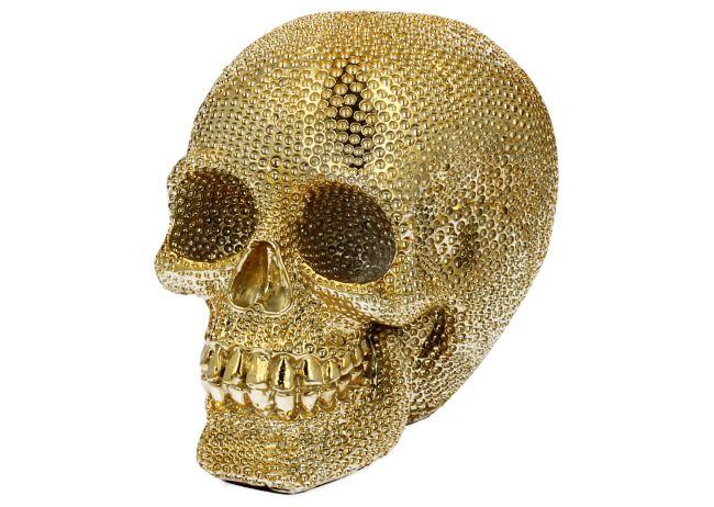 Lebka zlatá
