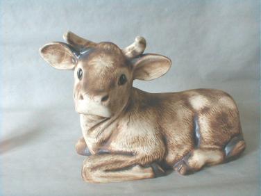 Kráva ležící