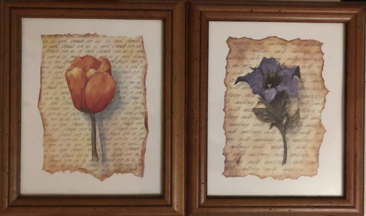 Obrázek na zeď v dřevěném rámu Tulipán a Kosatec sada