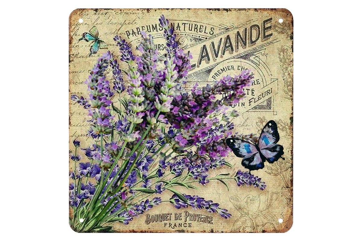 Plechový obraz Levandule Levande motýl