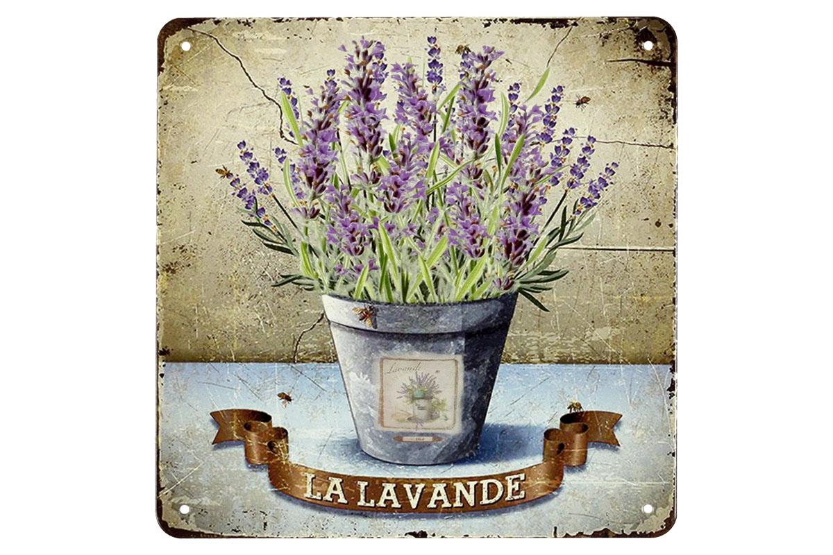 Plechový obraz Levandule Levande květináč