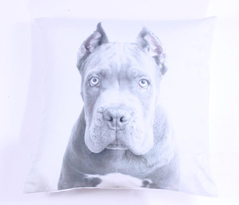 Luxusní polštář Pes - Doga ušpiněno